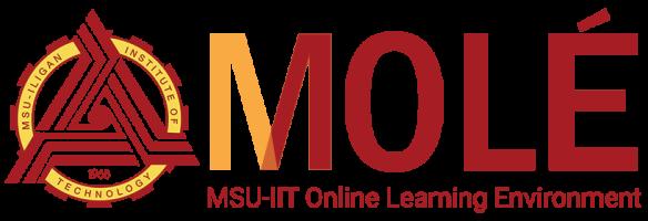 MSU-IIT Online Learning Environment