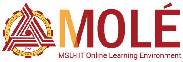 MSU-IIT Online Learning Environment